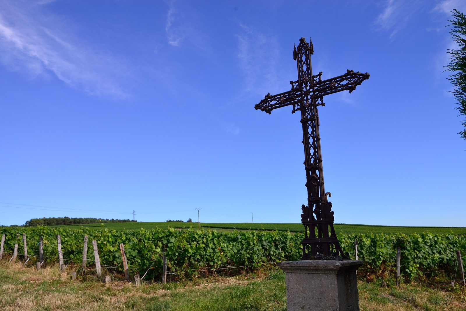 Wegkreuz und Weinberge