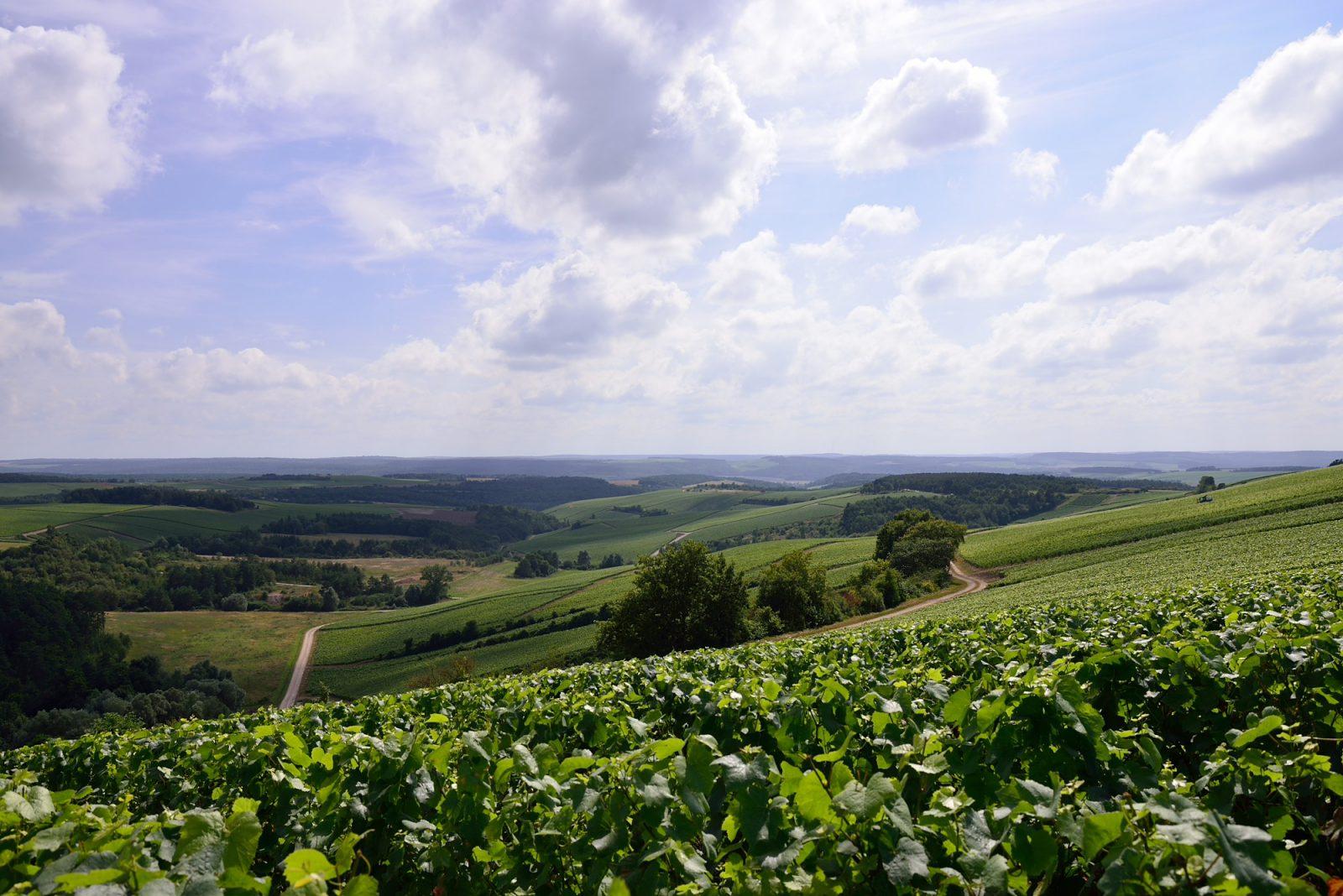 Aube Panorama